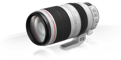 Canon EF 100-400mm f/4.5-5.6L IS II USM Premium Garantie