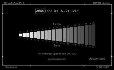 """DSC Labs CDX1-81W Xyla 21 120dB 21-step greyscale with built-in light source o/d 21.3x 13""""  - Self-i"""