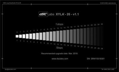 """DSC Labs CDX1-85W Xyla Standard 120dB 11-step greyscale with built-in light source o/d 21.3x 13""""  -"""